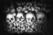 Catacombs, Paris